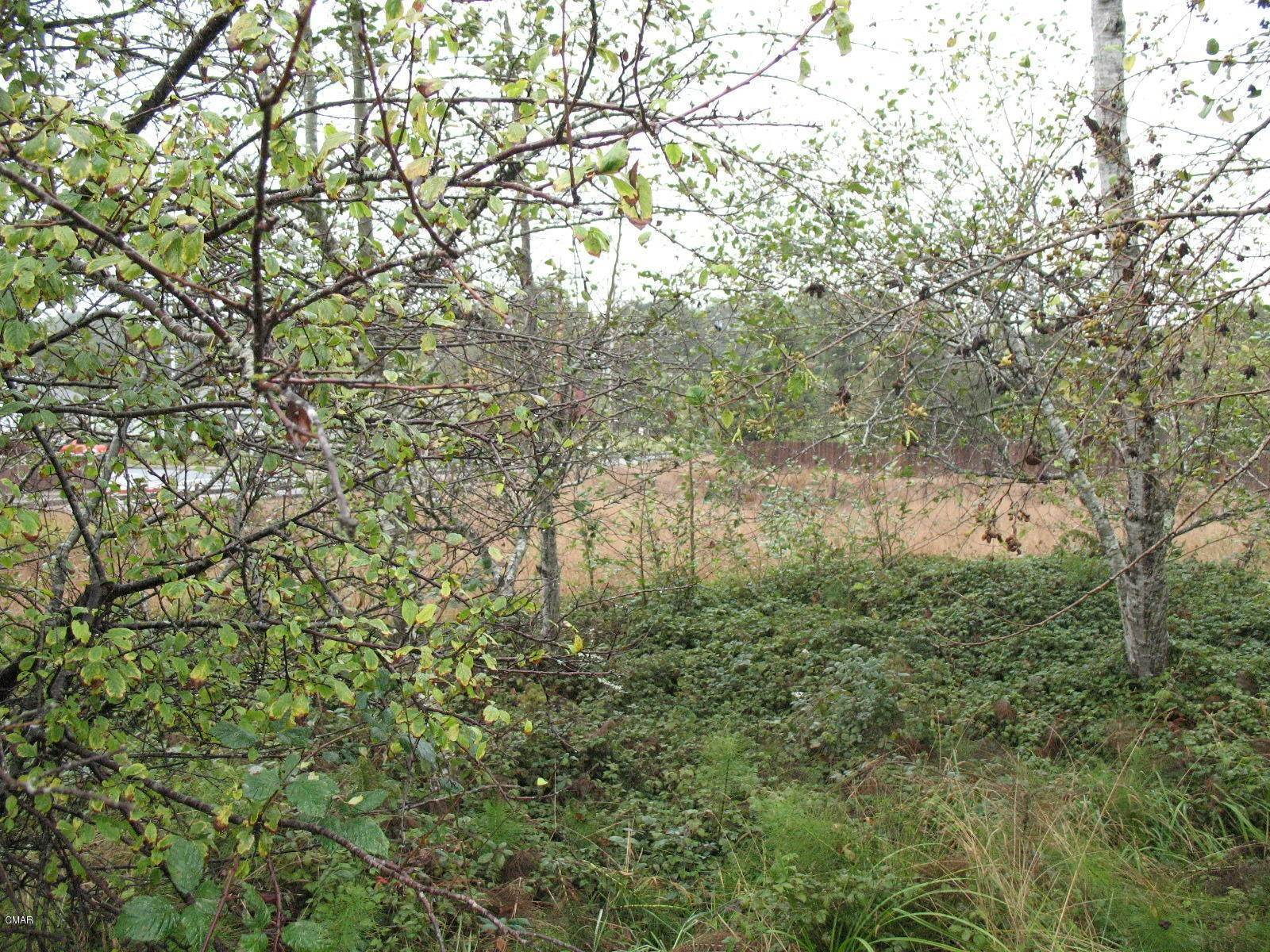 Land for Sale at 100 N Dana Street Fort Bragg, California 95437 United States