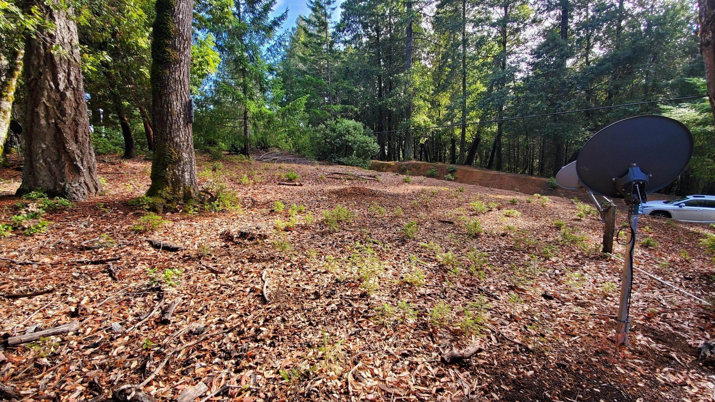 8. Land for Sale at 2410 Buckeye Road Willits, California 95490 United States