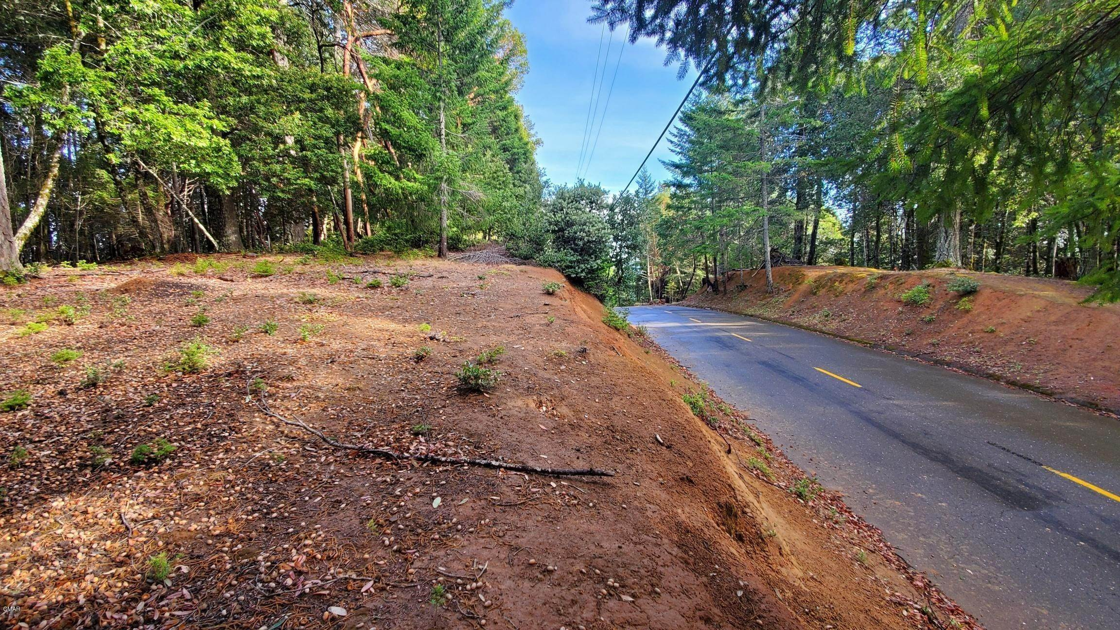 2. Land for Sale at 2410 Buckeye Road Willits, California 95490 United States