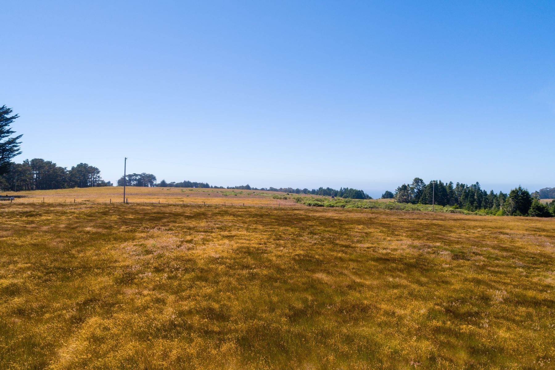 33. Farm and Ranch Properties por un Venta en Navarro Vista Farm 32550 Navarro Ridge Road Albion, California 95410 Estados Unidos